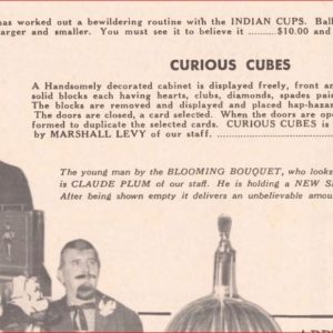 milson-worth-curious-cubes-ad-genii-1970-11