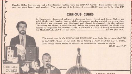 milson-worth-curious-cubes-ad-genii-1970-11