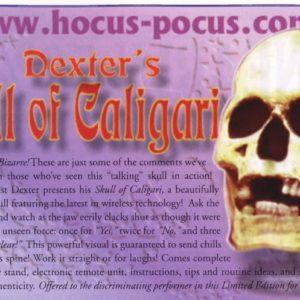 dexter-skull-of-caligari-ad-2000