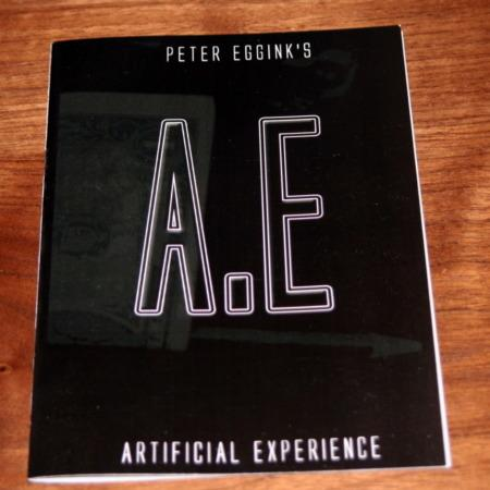 Artificial Experience by Peter Eggink