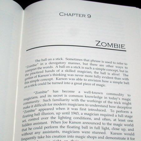 Joe Karson - Beyond Zombie by Michael Rose