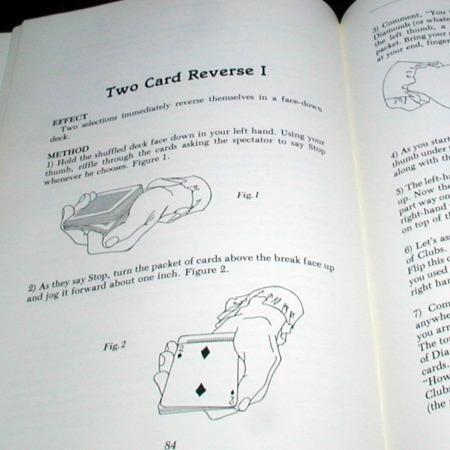 Cervon File, The by Bruce Cervon