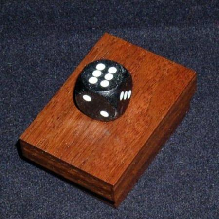 Collector's Edition Dice Box by Definitive Magic