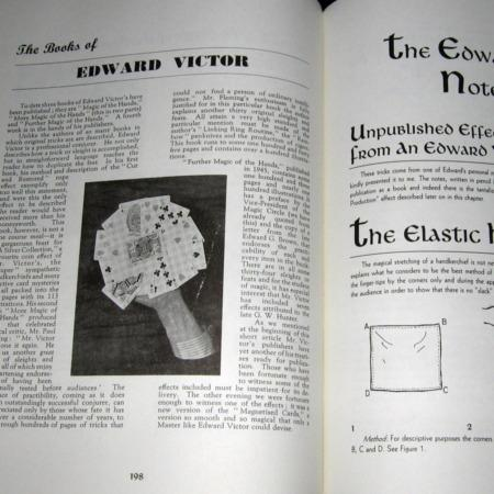 Magic of Edward Victor's Hands, The by Rae Hammond