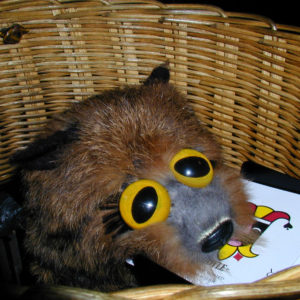 Khyber Raccoon by Collectors' Workshop