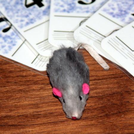 Lucky The Mouse by Bill Butski