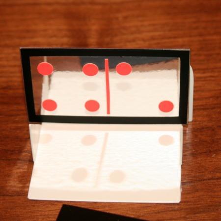 Lubor Fiedler's Mirror Domino Discovery by Howard Schwarzman