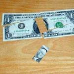 Paradox Dollar by Jerry Somerdin
