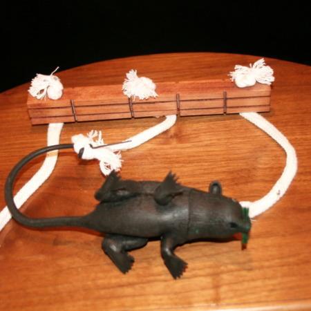 Rat's Riddle by John Kaplan