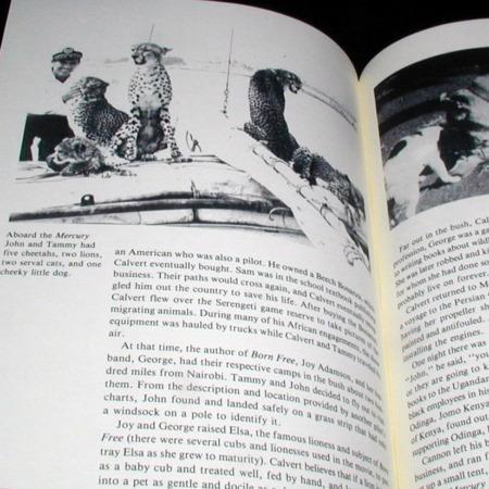 John Calvert - Magic and Adventures around the World by William R. Rauscher