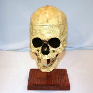 Skull of Caligari (Improved) by Dexter
