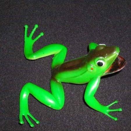 Tree Frog Monte by Lee Woodside