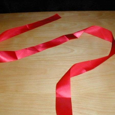 Visible Ribbon Fusion by Petrick & Mia