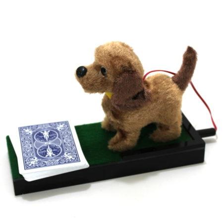 Anverdi Barking Dog (Version 2) by Anverdi