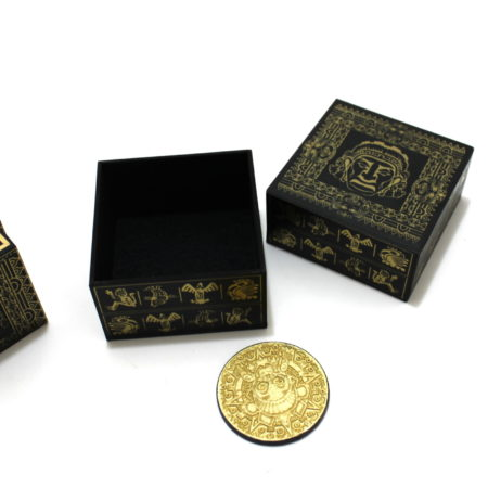 The Golden Coin of The Aztecs (2015) by Thomas Pohle