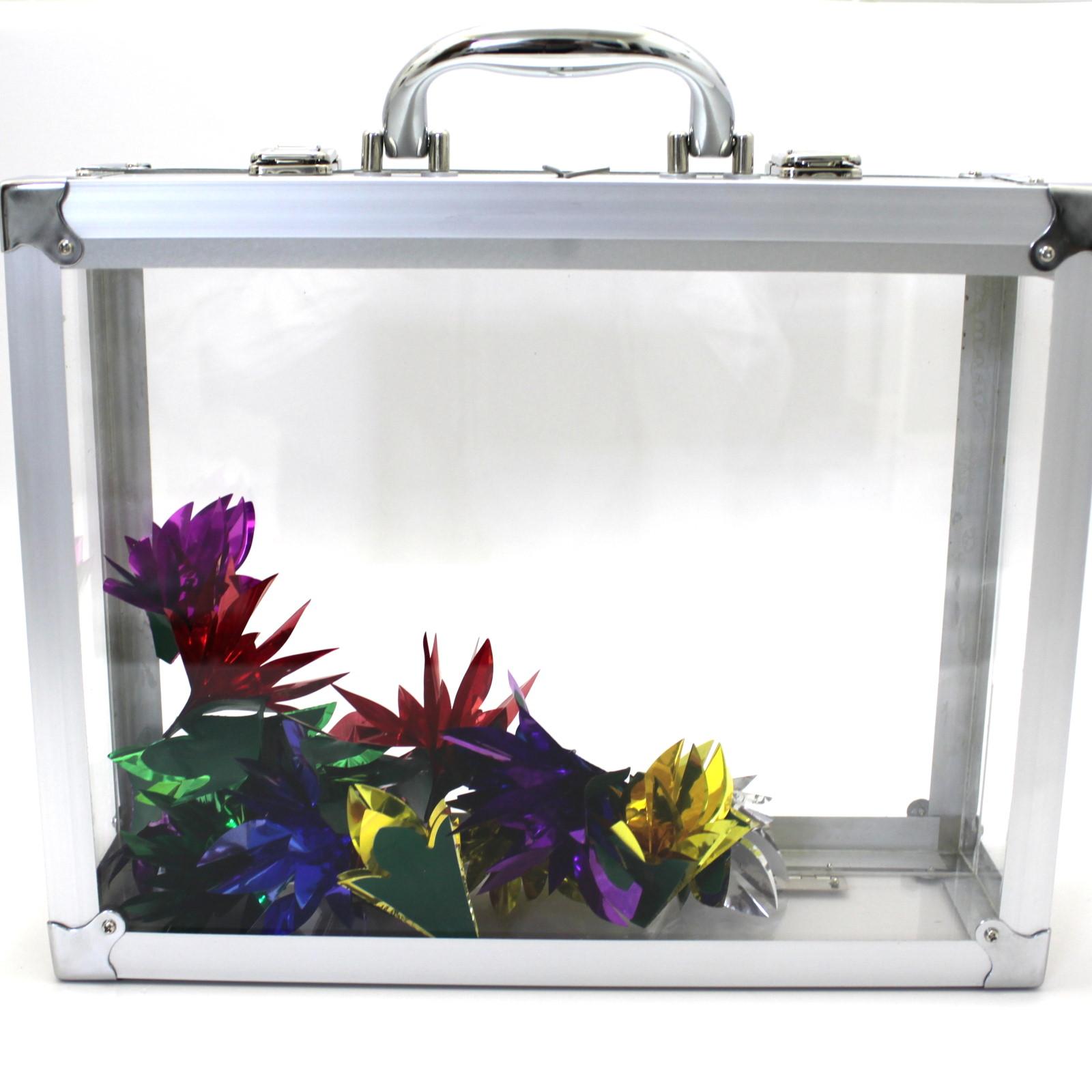 Glassy Briefcase by Tora Magic Company