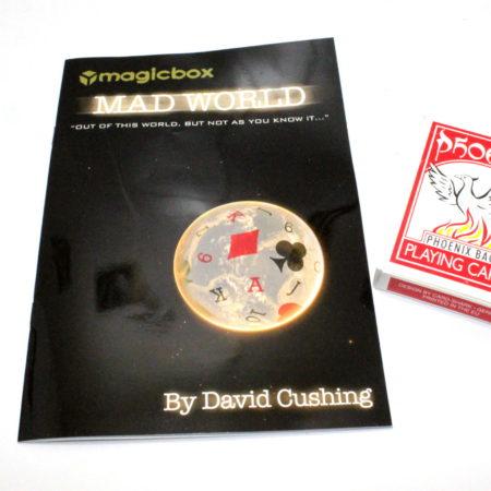 Mad World by David Cushing