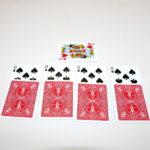 Wild Card by Frank Garcia, Peter Kane
