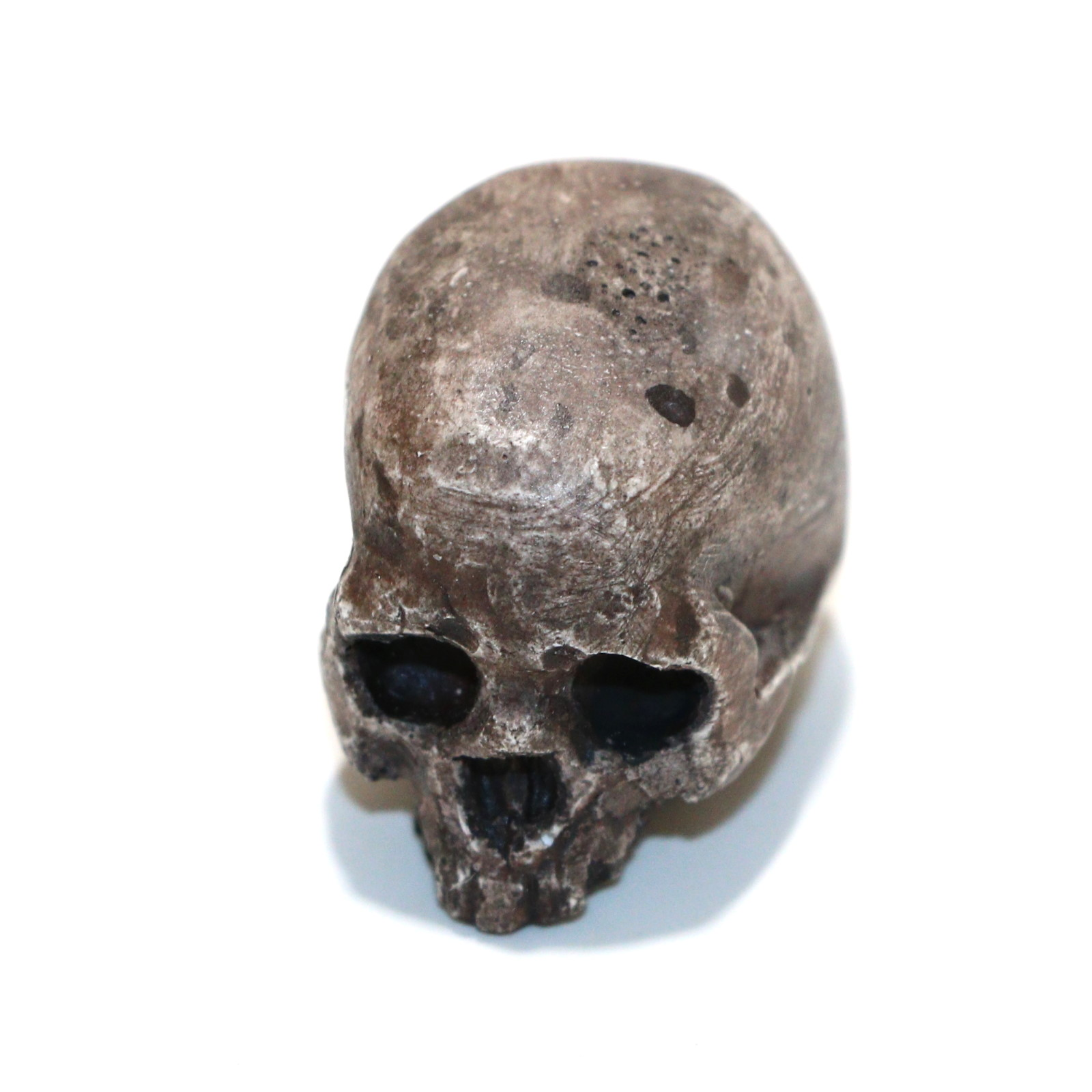 PK Catacomb Mini Skull by Little Jimmys Prop Shop