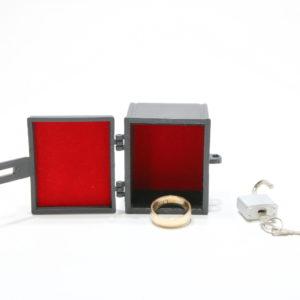 RSVP Box (Lippincott Box) by Matthew Wright